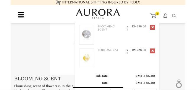 Aurora Italia 004
